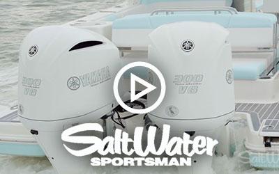 R317 - Salt Water Sportsman (2018)