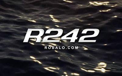 R242 Walkaround (2017)