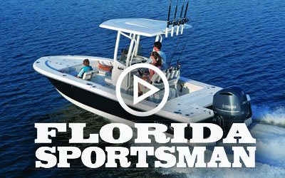 246 Cayman (2015) Florida Sportsman
