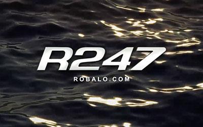 R247 Walkaround (2017)